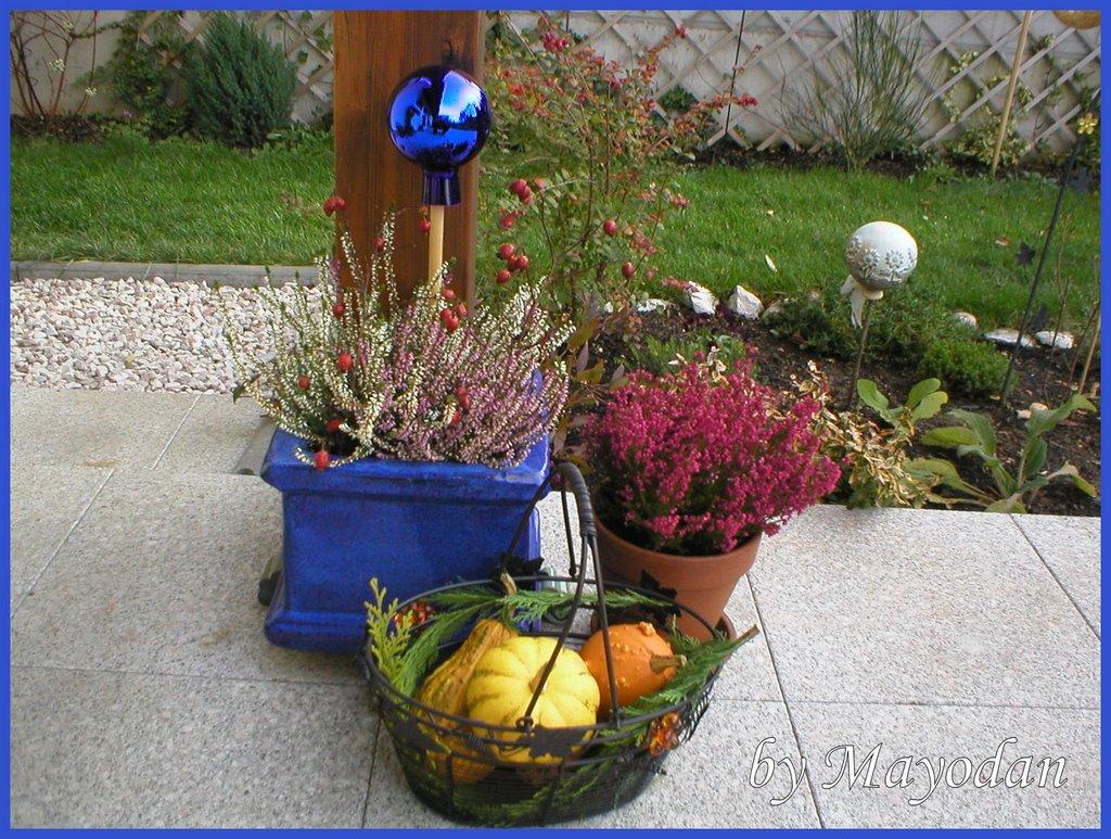 november 2006 mayodans home garden crafts. Black Bedroom Furniture Sets. Home Design Ideas