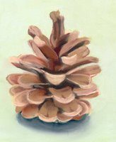 pine cone pastel painting