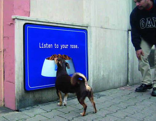 Smelly Floor Sticker By Pedigree Awesome Billboards And