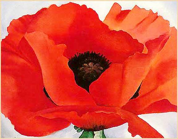 http://photos1.blogger.com/blogger/3634/2277/1600/poppy.jpg