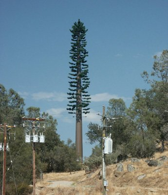cell towers as trees