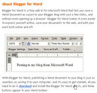 about blogger in world