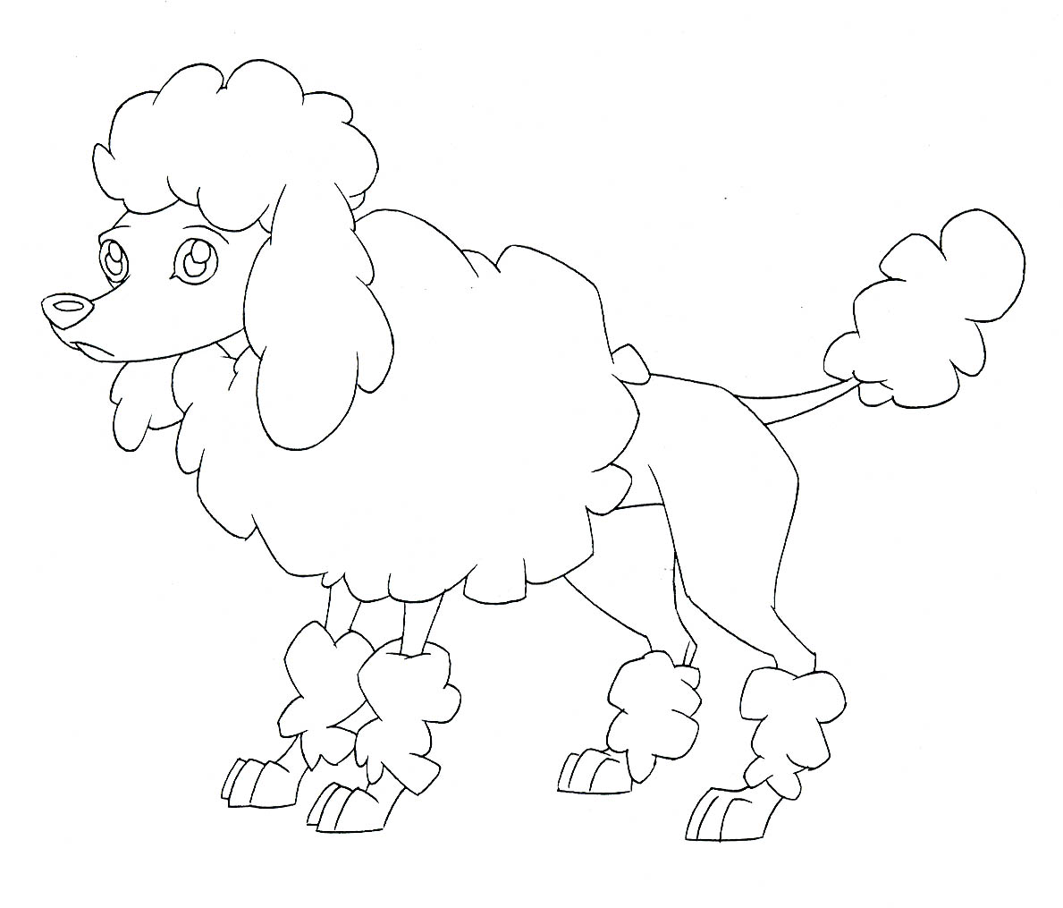 poodle coloring pages - standard poodle coloring pages
