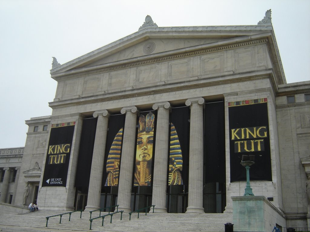 nominal me king tut at the field museum king tut at the field museum