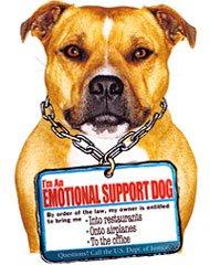 Shrink Rap Emotional Support Animals Revisited