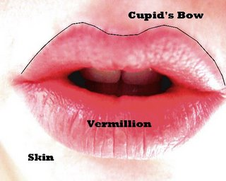 Sexy Lips and Cupid's Bow