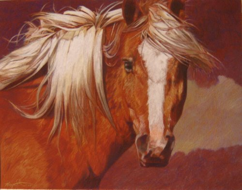 Image result for maggie stiefvater art