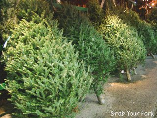 Christmas trees for sale