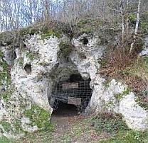 L'homme de Néandertal... deux fois plus proche !