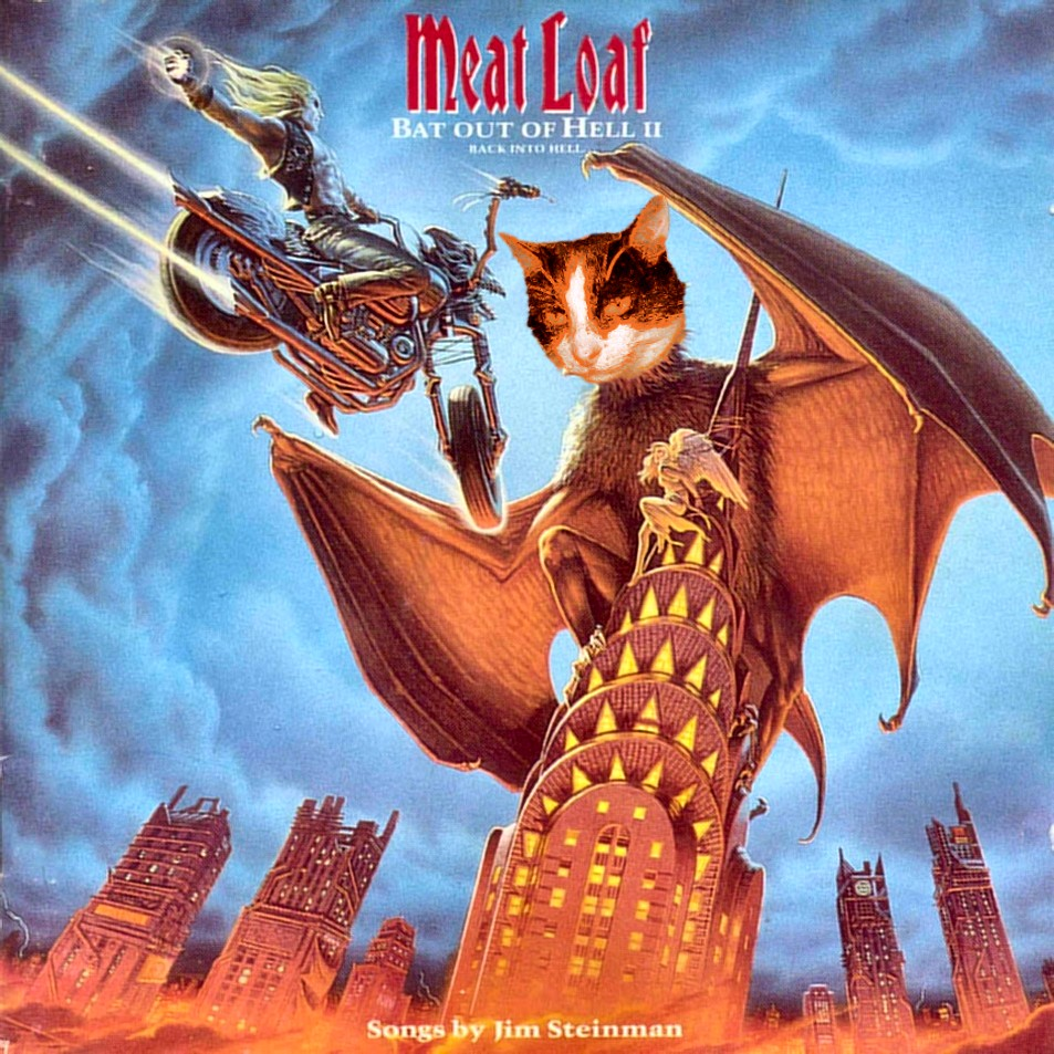 Good Rockin Tonight Don T Let Your Meat Loaf
