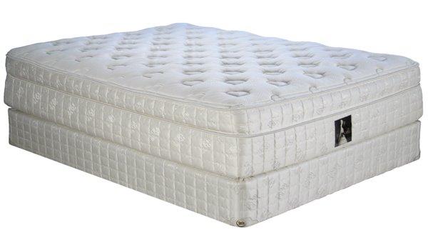 top pillow latex Serta wang vera