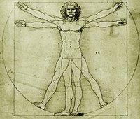 protecor de pantalla de Código da Vinci