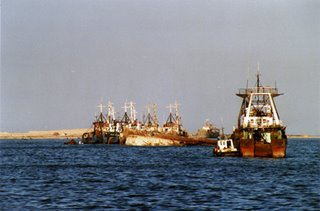 European fishing boats in Mauritanian waters