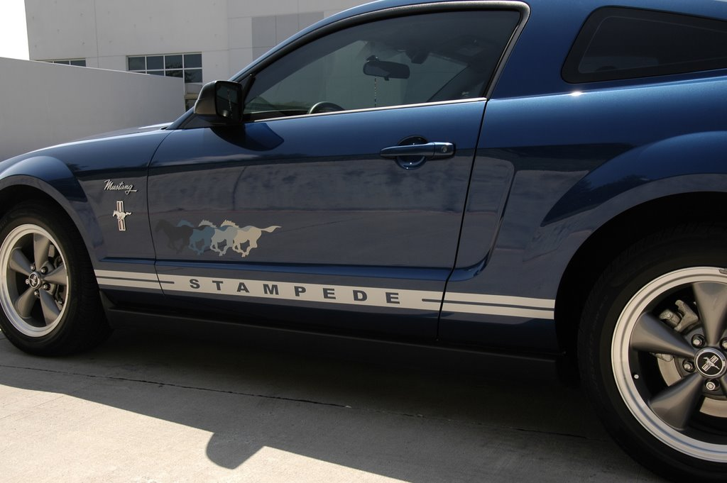 Rare Pony 2006 Mustang Stampede Edition New Pictures