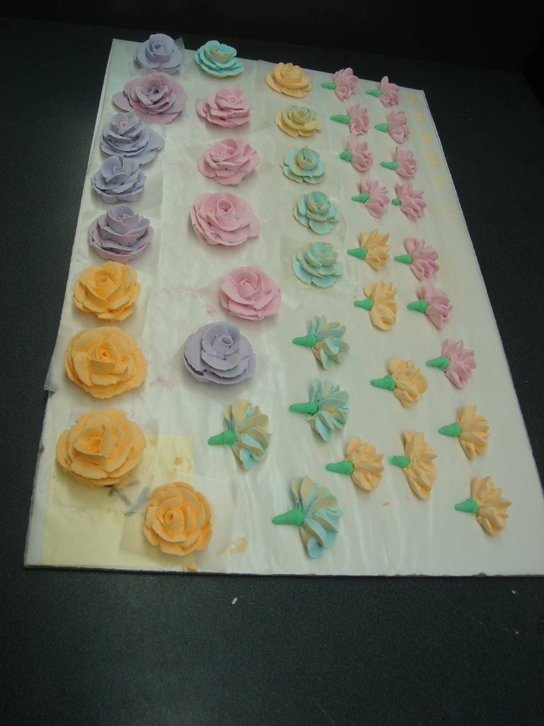 The Sin City Mad Baker: Wilton Master Course Cakes and Flowers