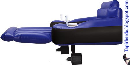 tapirherde der t gliche wahnsinn schwimmsessel mit antrieb. Black Bedroom Furniture Sets. Home Design Ideas