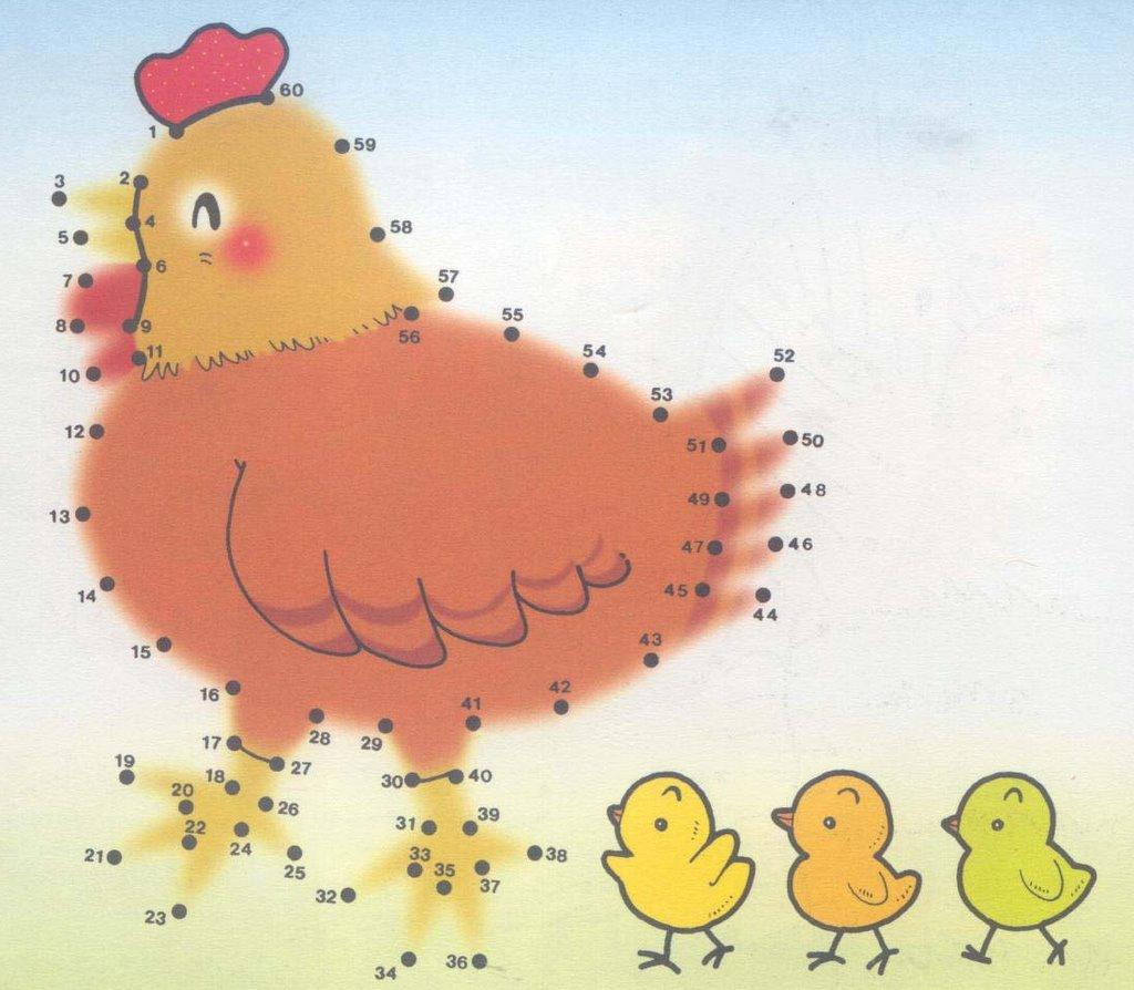 Peters Hühnerstall Malen Nach Zahlen