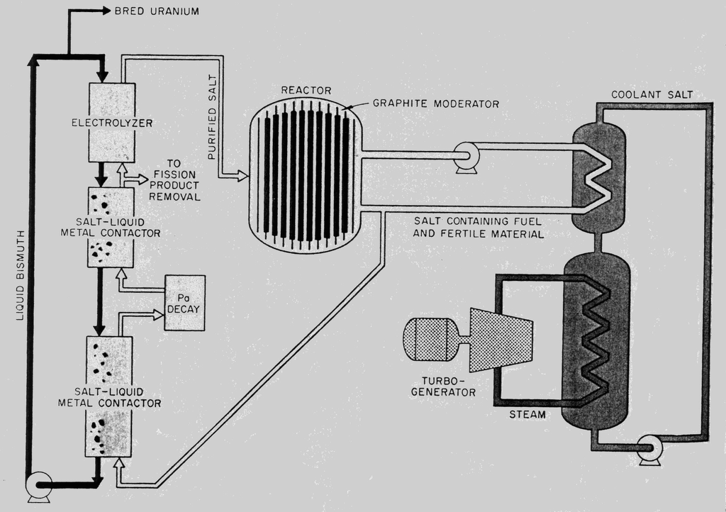 A brief History of the Liquid Fluoride Reactor