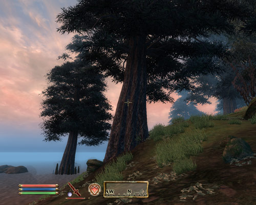The Elder Scrolls: Oblivion
