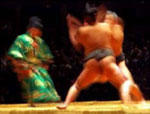 Sumo bout (c)JapanVisitor