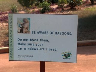 BE AWARE OF BABOONS.  Do not tease them.  Make sure your car windows are closed.