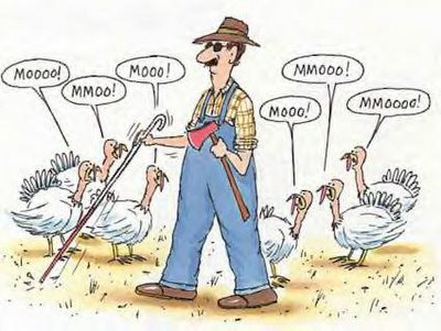 A blind farmer goes out to the Turkey pen with his axe to find a suitable bird.  Unfortunately, it would appear that all the Turkeys have learned to MOO like cows, so the poor farmer walks right by them.