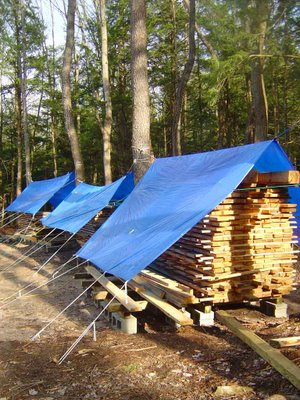 Drying Lumber