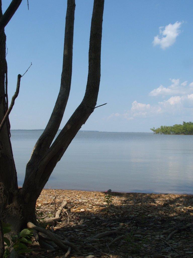 Ordinarily Oklahoma Oologah Lake