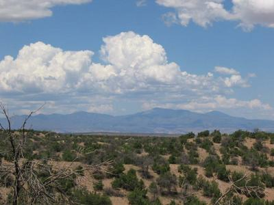 View of the mountains from The Ranch, Santa Fe Opera, July 2005