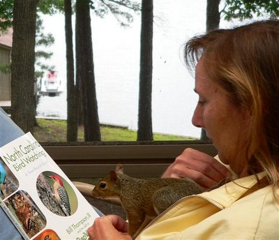 the literate squirrel