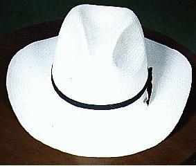 Campeche es el único Estado en México donde se elaboran los sombreros de  palma jipijapa. Jipijapa es el nombre de una ciudad de Ecuador. 4d84cb66ea7