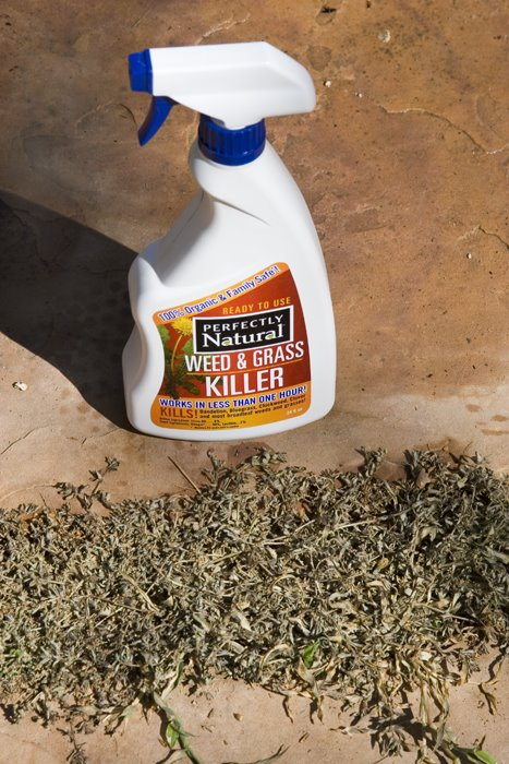 Natural Weed Killer Recipe Better Homes And Gardens