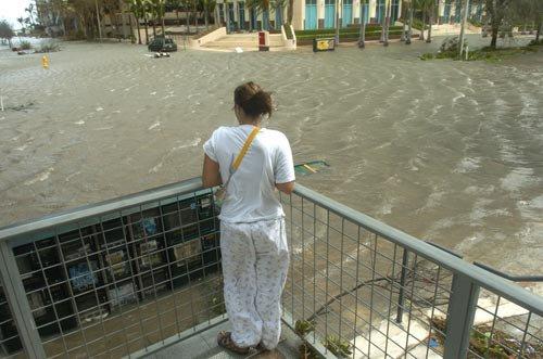 Image result for miami inundada