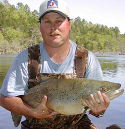 On April 10, 2005, Jason Archie of Broken Bow, Oklahoma caught a brown trout that not only surpassed the old record, it nearly doubled it with a catch of 17-pound, 4.64-ounces