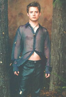 Is Elijah Wood Gay 34