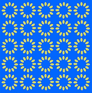 Rotating koban Illusion