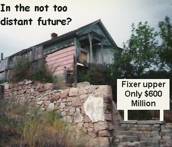 Editorials from Theslowlane: Future Real Estate Ad?