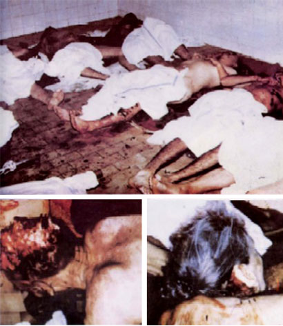 Serbia SOS: WARNING! Very Graphic Content: The Real Srebrenica Genocide