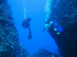 Diving the Grotto