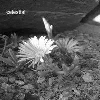 Celestial - EP2
