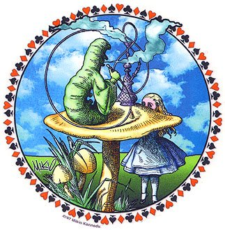 the brave new world order examining rabbit and mushroom