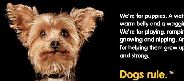 Pedigree Dog Food Commercials