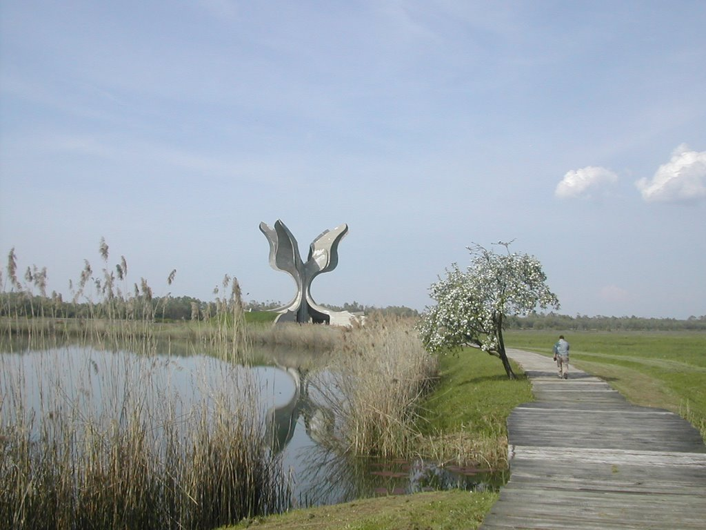 jasenovac extermination camp But some of the images were from jasenovac, a death camp run by croatia's  nazi puppet regime and known as 'the auschwitz of the balkans',.