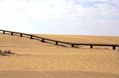 Subtopia: The Saudi's Immigrant-hunting Border Fence (<i>the