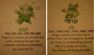 Ox and sheep compatibility