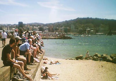 Crowds in Oriental Bay watching the start of leg 4 of the Volvo Ocean race