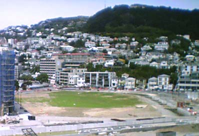 Waitangi Park under construction - grass growing