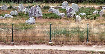 The fenced off stones at Carnac