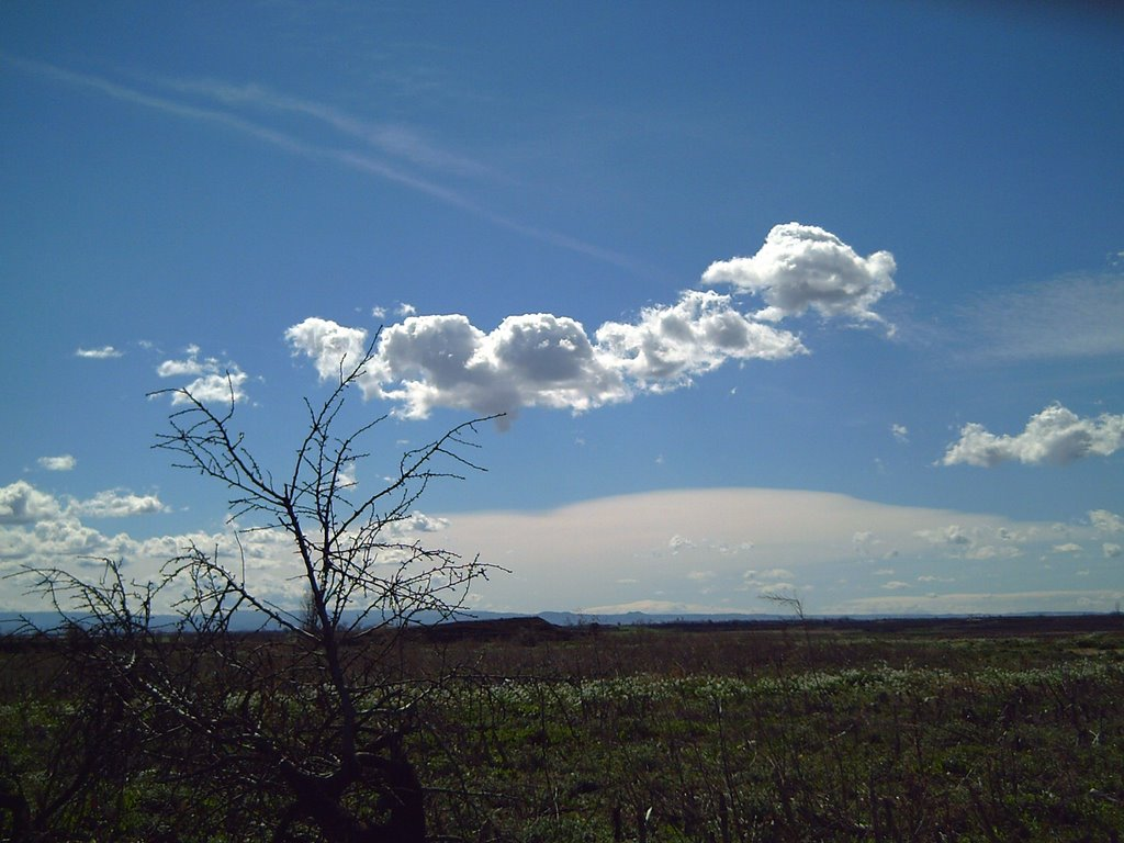 Landscapes of Catalonia: Vallverd D'Urgell, LLeida