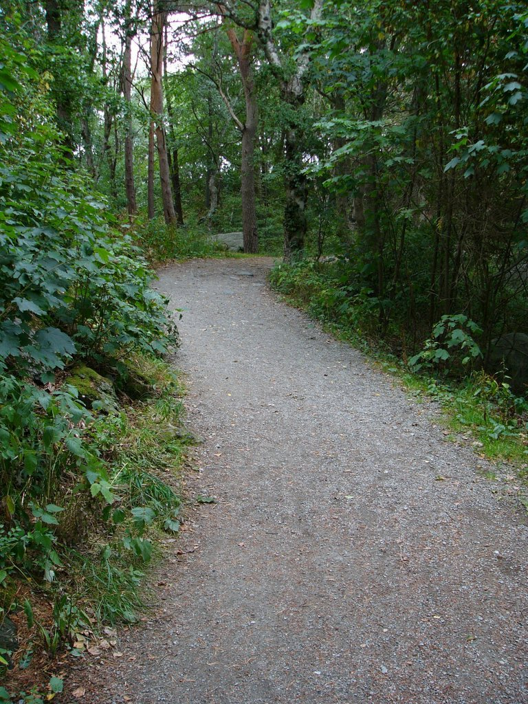path nature natural paths daily well stavanger